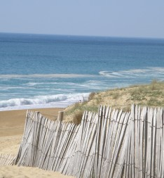 © Sunny French Property - Beach in Labenne Ocean