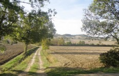 © Sunny French Property - Quiet Lauragais landscape at the end of summer