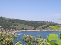 Sea and vineyards in Banyuls sur mer © Sunny French Property