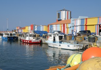 © Sunny French Property - Harbour and Fish market in Le Barcares