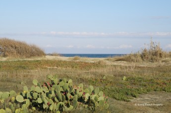 Seafront development on Languedoc coastline - the beach in Sainte Marie Plage